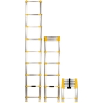 Telescoping Extension Ladders