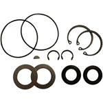 PaceCart Pump Seal Kit